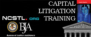 Capital Litigation picture